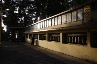 Tibetan nun spins prayer wheels on Kora around Dalai Lama's residence