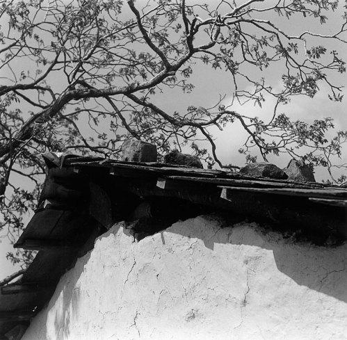 Gaddi farmhouse detail
