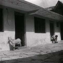 Gaddi farmhouse