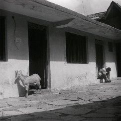 Gaddi farmhouse