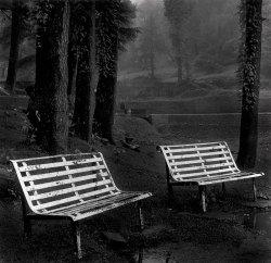 Public benches at Dal Lake