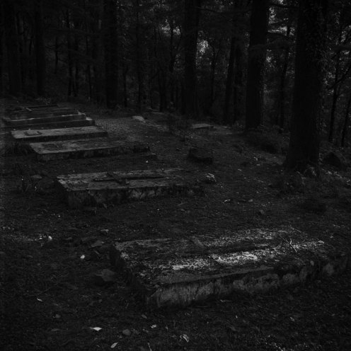Graveyard of the Church of St John in the Wilderness, McLeodganj, Dharamshala