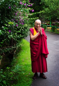 His Holiness the 14th Dalai Lama of Tibet. Photo by Ashwini Bhatia