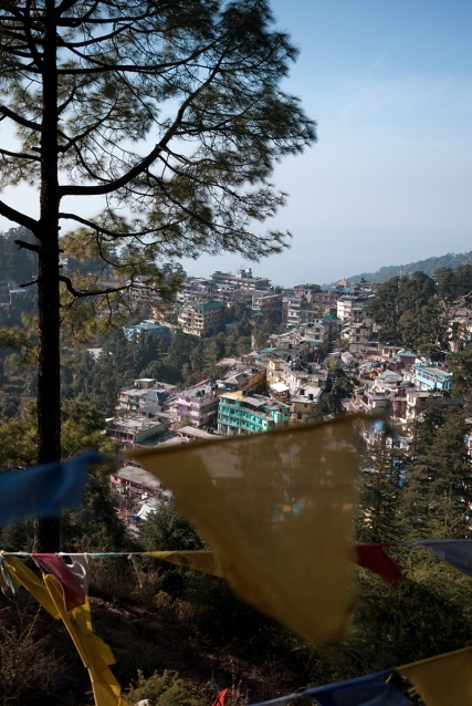 McLeodganj viewed through Tibetan Buddhist prayer flags. Photo by Angus McDonald