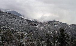 Snowfall over McLeodganj, Dharamshala, January 2012. Photo by Ashwini Bhatia