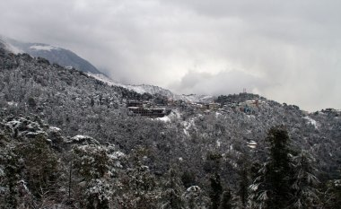 Snowfall over McLeodganj, Dharamshala, January 2012. Photo by Ashwini Bhatia