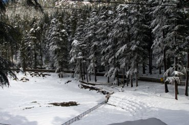 Snowfall at Dal Lake near McLeodganj, Dharamshala, January 2012. Photo by Ashwini Bhatia