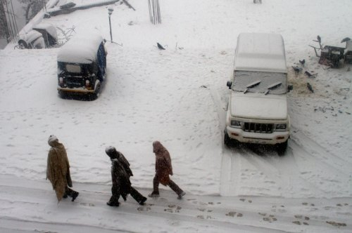 Snowfall in McLeodganj, Dharamshala, January 2012. Photo by Ashwini Bhatia