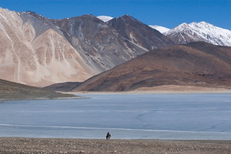 Solitary horseman beside frozen Pangong Lake in Ladakh, India. Photo by Angus McDonald