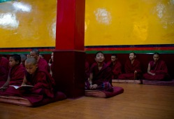 Monks at Kirti Monastery, Dharamshala. Photo by Ashwini Bhatia