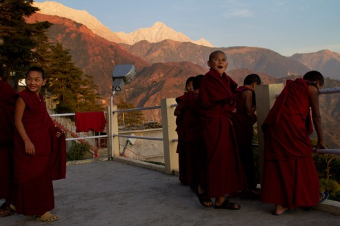Novice monks at Kirti Monastery, Dharamshala, with the Dhauladhar range of the Himalayas in the background. Photo by Ashwini Bhatia