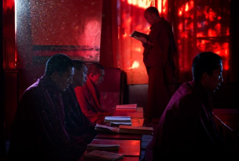Monks study in class at Kirti Monastery, Dharamshala. Photo by Ashwini Bhatia